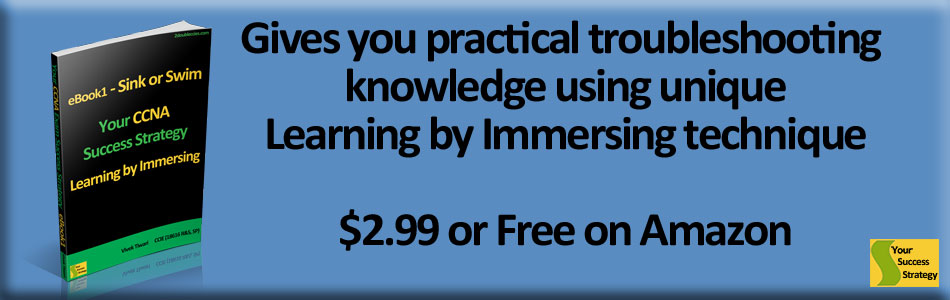 your ccna success strategy learning by immersing ebook1 sink or swim